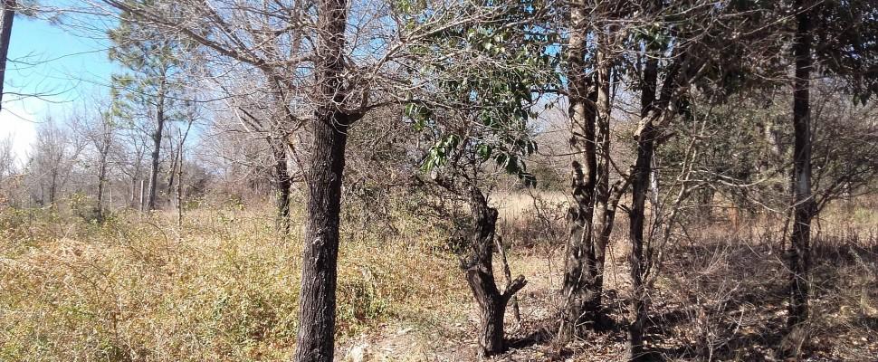 Lote Villa Parque El peñón Oeste-a 150 mts de ruta 38-Casa Grande